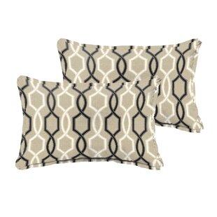 20 Inch Throw Pillows Wayfair