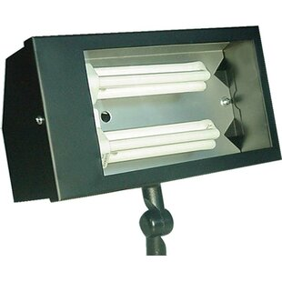 Dabmar Lighting 2-Light Flood Light