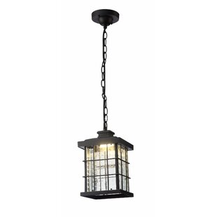 Affordable Gravesend Outdoor Hanging Lantern By Charlton Home