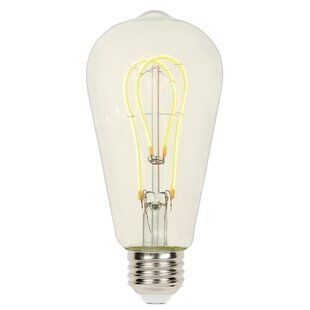 Bright White Edison Bulb Wayfair