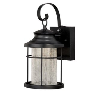 Alorton 1-Light Outdoor Wall Lantern
