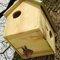 Best for Birds Squirrel House