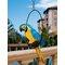 Statue Paradise Parrot