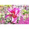 Pink Flower by Andrew Lee Graphic Art Wrapped on Canvas