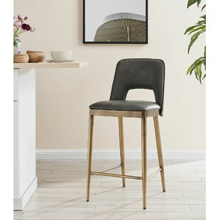 Choquette 66cm Bar Stool By Williston Forge