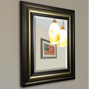 Darby Home Co Mickey Rectangle Stepped Antique Wall Mirror