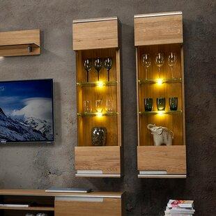Brayden Studio Dalzell 1 Door Display Accent Cabinet