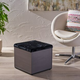 Griner Storage Ottoman by Wrought Studio