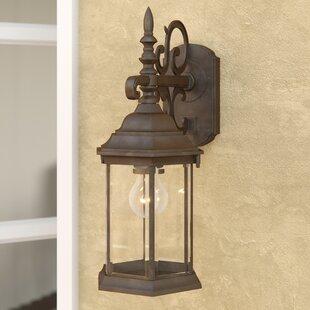 Savanna 1-Light Outdoor Wall Lantern