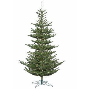 6' Green Spruce Artificial Christmas Tree with 300 Clear Lights with Stand by The Holiday Aisle
