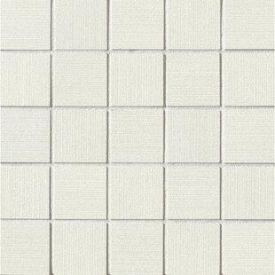 Parvatile Proud X Porcelain Field Tile In Matte White Wayfair - Daltile salinas