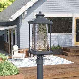 Find for Herrell 1-Light LED Outdoor Lantern Head By Brayden Studio