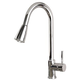 Laguna Brass Pull Down Single Handle Kitchen Faucet