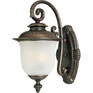 Darby Home Co Merrimack 1-Light Outdoor Sconce