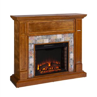 https://secure.img1-fg.wfcdn.com/im/52180808/resize-h310-w310%5Ecompr-r85/6199/61995144/electric-fireplace.jpg