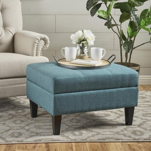 Alcott Hill Thomasson Storage Ottoman