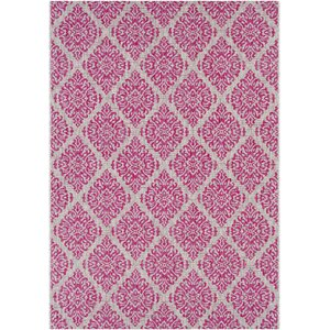 Fonwhary Bright Pink Indoor/Outdoor Area Rug