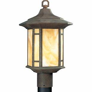 Alcott Hill Triplehorn 1-Light Lantern Head in Brown