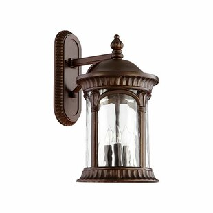 Price comparison Witte 3-Light Outdoor Wall Lantern By Fleur De Lis Living