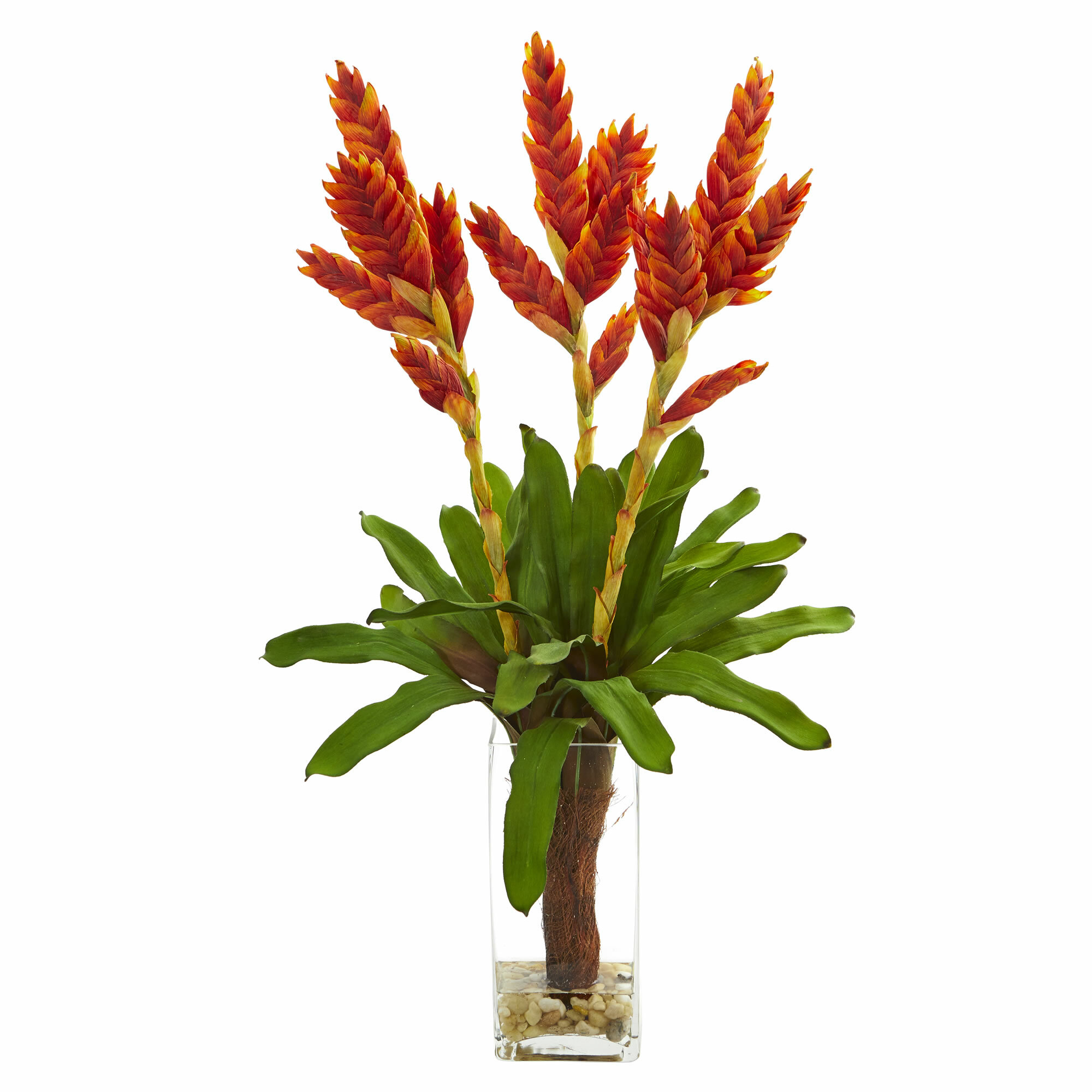Bay Isle Home Artificial Tropical Bromeliad Floral Arrangement Invase Wayfair