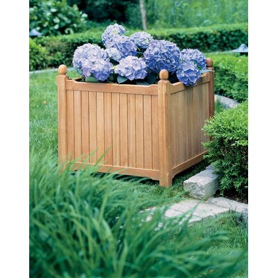 Harpersfield Shorea Wood Planter Box Beachcrest Home Size: 19.75 H x 38 W x 19 D