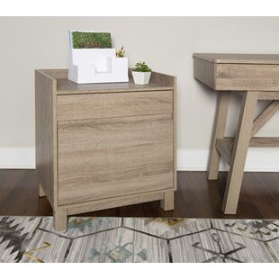 Saskia 2-Drawer Filing Cabinet by Andover Mills #2