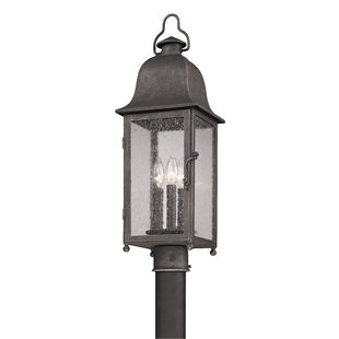 Susannah Outdoor 3-Light Lantern Head by Darby Home Co