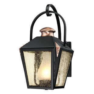 Comparison Ibarra 1-Light Outdoor Wall Lantern By Darby Home Co