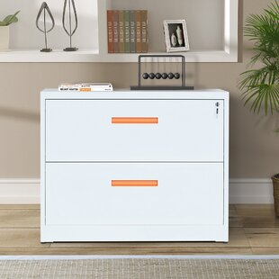 Reviews Goddard 2-Drawer Lateral Filing Cabinet by Rebrilliant