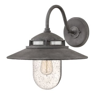 Order Hellebore 1-Light Outdoor Barn Light By Laurel Foundry Modern Farmhouse