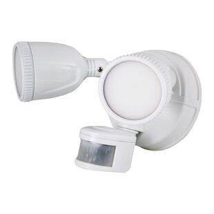 2-Light LED Spot Light