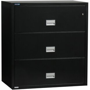 Phoenix Safe International 3-Drawer Vertical Filing Cabinet