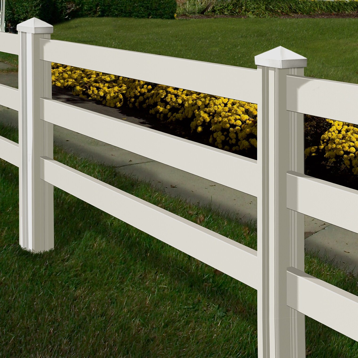 Wam Bam 4 ft. H x 7 ft. W Traditional Ranch Fence Panel & Reviews ...