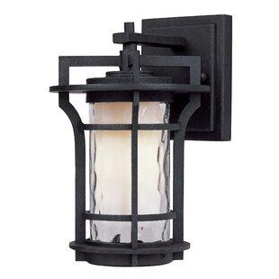 Millwood Pines Espitia 1-Light Outdoor Wall Lantern
