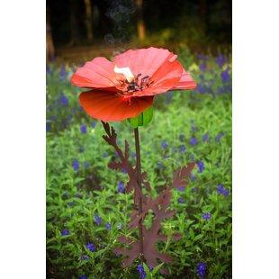 Desert Steel Poppy Garden ..