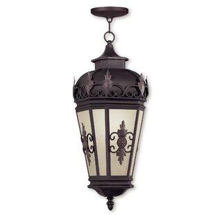 Astoria Grand Bedarra 1-Light Outdoor Hanging Lantern
