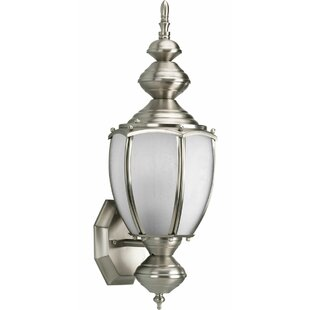 Triplehorn 1-Light Outdoor Aluminum Sconce