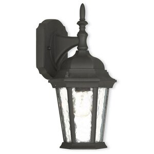 Busse 1-Light Outdoor Wall Lantern