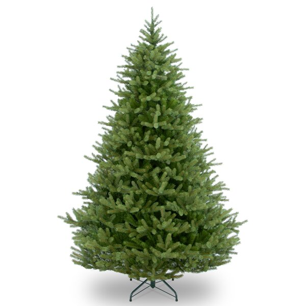 spruce christmas tree
