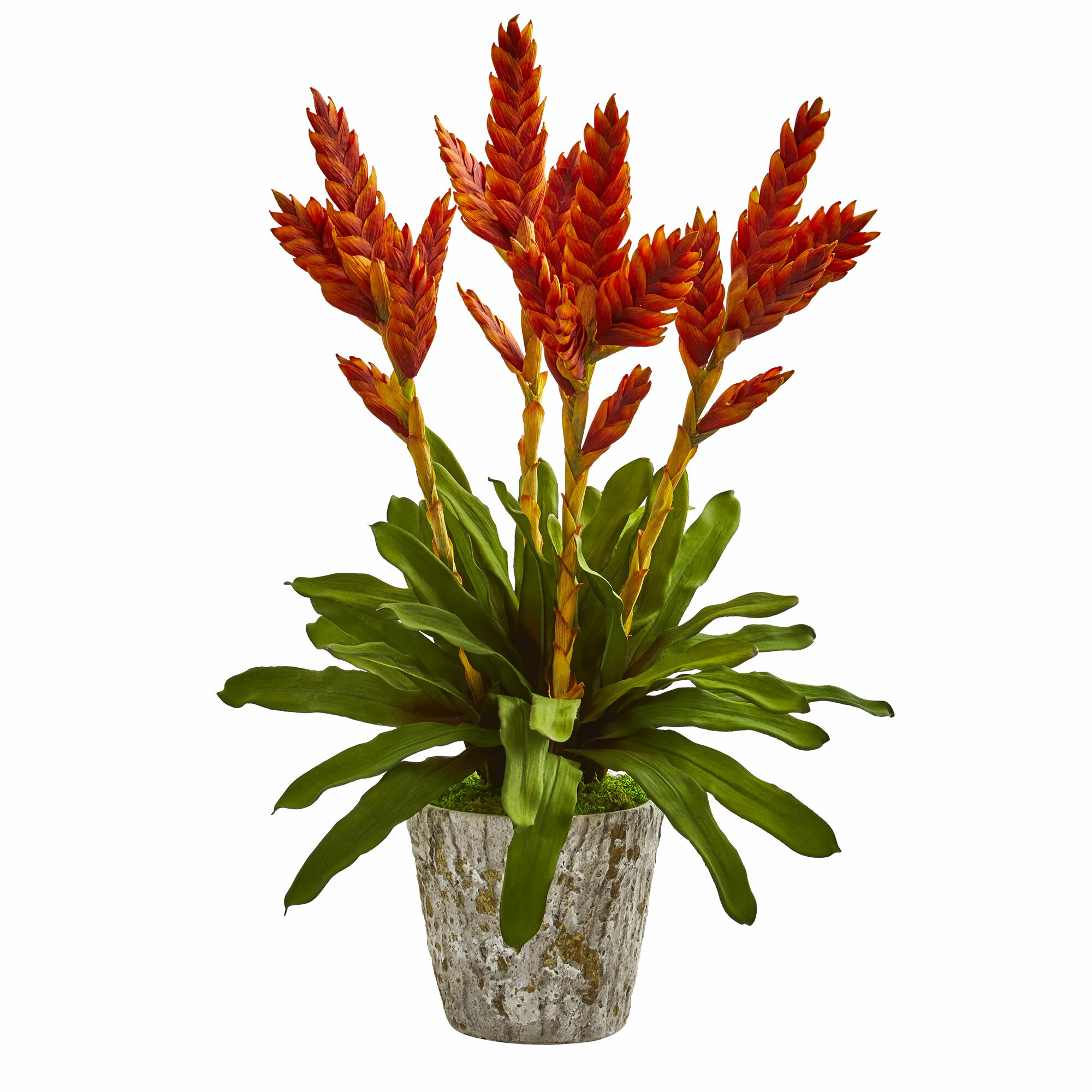 Bay Isle Home Artificial Tropical Bromeliad Floral Arrangement In Planter Wayfair