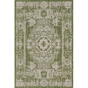 Cowie Green/Gray Indoor/Outdoor Area Rug