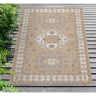 Arverne Neutral Indoor/Outdoor Area Rug