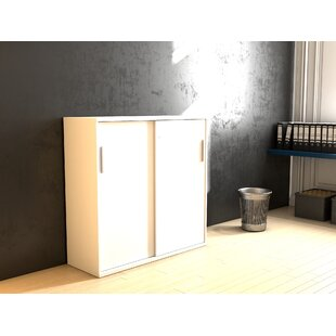 Favors 2 Door Storage Cabinet By Symple Stuff