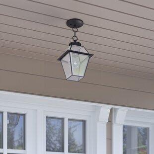 Orchard Lane 1-Light Outdoor Hanging Lantern by Three Posts