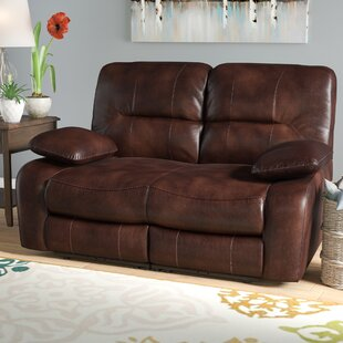 Red Barrel Studio Benson Reclining Loveseat