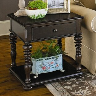 Badgett End Table With Storage
