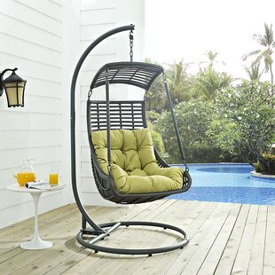 Jungle Swing Chair with Stand