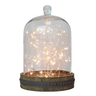 Chiasson 20 ft. 120-Light Fairy String Light