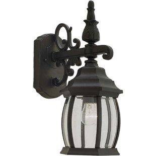 Della 1-Light Outdoor Wall Lantern