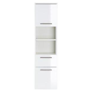 Viva Full-length 35 X 135cm Wall Mounted Cabinet By Belfry Bathroom